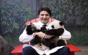 Pandas, the Prime Minister, and murals! (Member sharing)