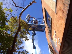 WALS: Working at Heights Certification